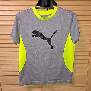 プーマ(PUMA)の半袖Tシャツ PUMA 150㎝(Tシャツ/カットソー)