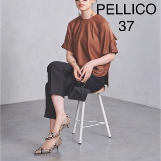 PELLICO - 美品 ★ PELLICO パイソン柄パンプス ミドルヒール 37