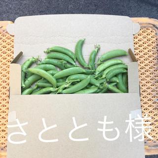 鹿児島産甘スナップエンドウ500g^_^(野菜)
