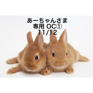★11/12★あーちゃんさま専用ページ
