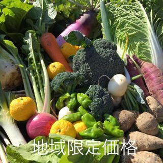 野菜BOX  LLサイズ   地域限定価格(野菜)
