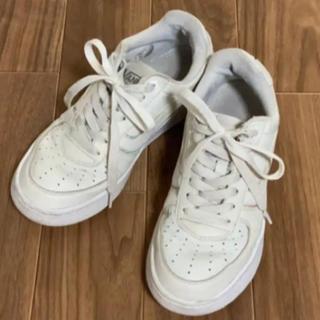 VANS - vans スニーカー ホワイト 白 24