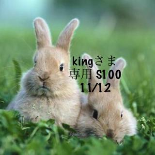 スヌーピー(SNOOPY)の★11/12★kingさま専用ページ100×①(その他)