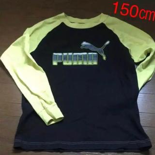 プーマ(PUMA)のPUMA 長袖Tシャツ 150㎝  ブラック(Tシャツ/カットソー)