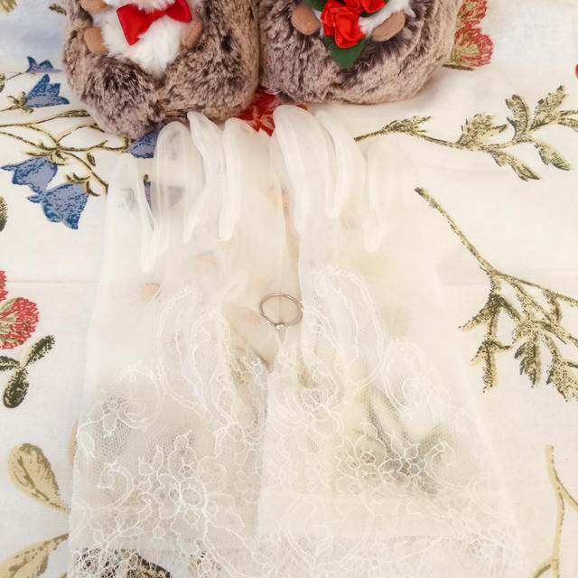 Vera Wang(ヴェラウォン)のウエディング グローブ レディースのフォーマル/ドレス(ウェディングドレス)の商品写真