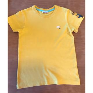 ブランシェス(Branshes)のTシャツ(その他)