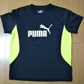 プーマ(PUMA)のPUMA Tシャツ(150)(Tシャツ/カットソー)