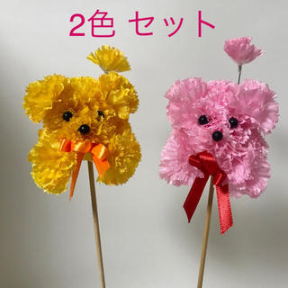 カーネーション プードル ピック 中  (ピンク&オレンジ ) 2本セット(その他)