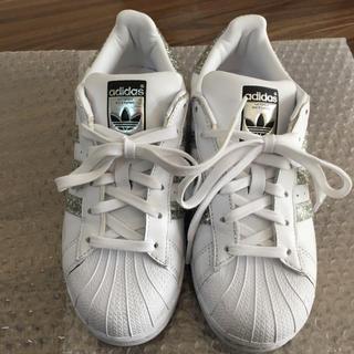 adidas - アディダス★スニーカー