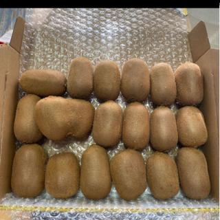 行列のできるキウイ農家の美味しいキウイフルーツ小サイズ18個入り(フルーツ)