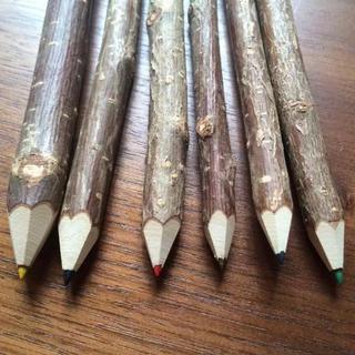 *木の色鉛筆(ケース付)
