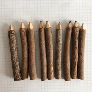 *木の色鉛筆(ケース不要→¥380)