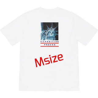 Supreme - Supreme North Face Statue of Liberty Tee