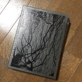 the GazettE 初回限定盤ライブDVD