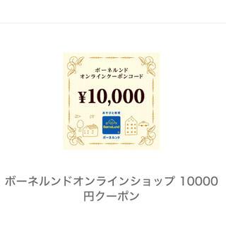 クリスマスに❗️ボーネルンド オンラインクーポン 1万円分