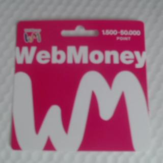 ウェブマネー4000円分