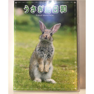 うさぎ島日和  Rabbit Island Now DVD(趣味/実用)