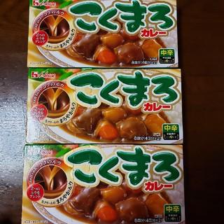 ハウスショクヒン(ハウス食品)のこくまろカレー 中辛 8皿分 × 3箱(その他)