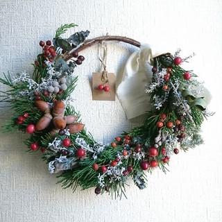 w №19 コチアと色々ベリーのクリスマスハーフリース(リース)