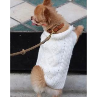 トゥデイフル(TODAYFUL)のトゥデイフル  犬 ニット ホワイト(犬)