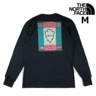 THE NORTH FACE - ザ・ノースフェイス ロンT (M) レディース
