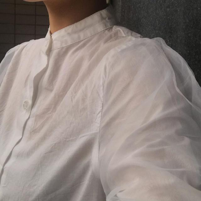 archives(アルシーヴ)の袖シアー シフォン トップス レディースのトップス(カットソー(長袖/七分))の商品写真