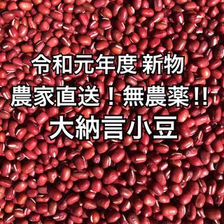 大納言小豆 無農薬栽培 500g