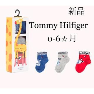 トミーヒルフィガー(TOMMY HILFIGER)の新品 トミーヒルフィガー Baby ベビー 靴下 3足セット イエロー(靴下/タイツ)