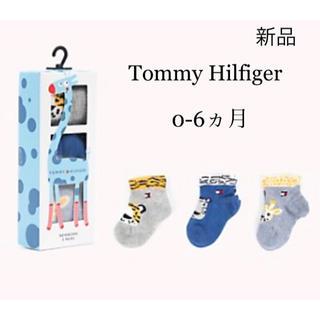トミーヒルフィガー(TOMMY HILFIGER)の新品 トミーヒルフィガー Baby ベビー 靴下 3足セット ブルー(靴下/タイツ)