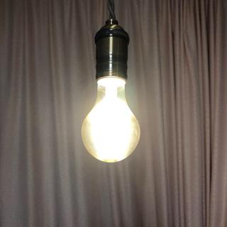 アイリスオーヤマ(アイリスオーヤマ)の照明器具&LED電球 2点セット(天井照明)