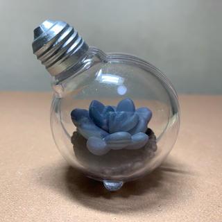 バンダイ(BANDAI)の豆電球テラリウム フーケリー バンダイ(置物)