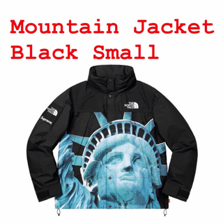 Supreme - Supreme/The North Face Mountain Jacket