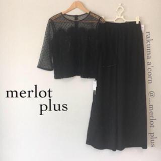 メルロー(merlot)のmerlot plus ドットチュールレーストップス セットアップ*ブラック(その他)