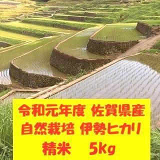 無農薬!自然栽培!農家直送!令和元年度佐賀県産!「伊勢ヒカリ」精米5kg(米/穀物)