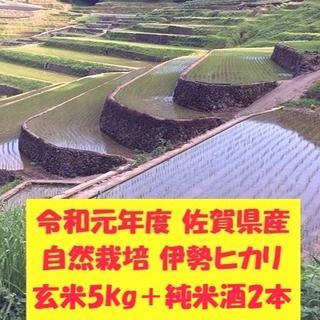 令和元年佐賀県産「伊勢ヒカリ」玄米5kg+「純米酒 天乃栄(あまのさかえ)」2本(米/穀物)