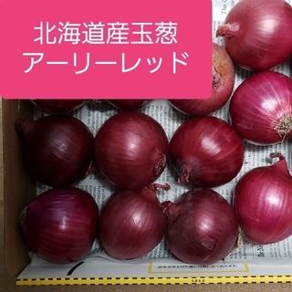北海道産赤玉葱【アーリーレッド】訳あり品Sサイズ(野菜)