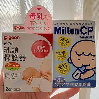 Pigeon - 乳頭保護器 Lサイズ