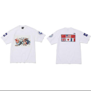THE NORTH FACE - 最安 the north face trans Antarctica tee L