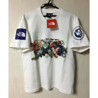 THE NORTH FACE - THE NORTH FACE Trans Antarctica Tee Sサイズ