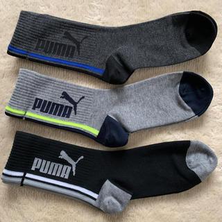 プーマ(PUMA)のプーマ  靴下 ソックス 23〜25㎝(靴下/タイツ)