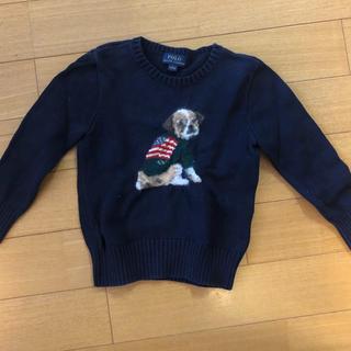 POLO RALPH LAUREN - polo 人気のセーター