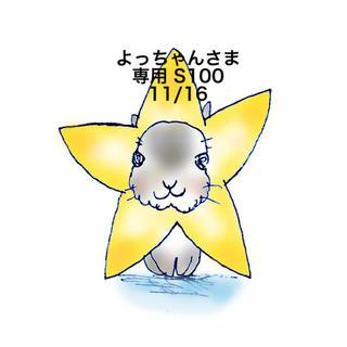 スヌーピー(SNOOPY)の★11/16★よっちゃんさま専用ページ100(その他)