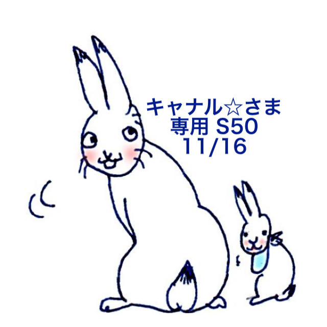 SNOOPY(スヌーピー)の★11/16★キャナル☆さま専用ページ/ S50 その他のその他(その他)の商品写真