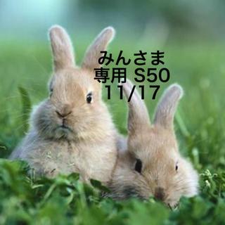 スヌーピー(SNOOPY)の★11/17★みんさま専用ページ/S50(その他)