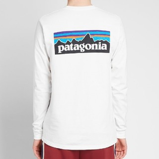 patagonia - Mサイズパタゴニア ロングスリーブ tシャツ P-6ロゴ レスポンシビリティー
