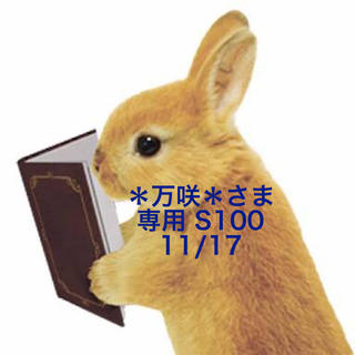 スヌーピー(SNOOPY)の★11/17★*万咲*さま専用ページ/S100(その他)