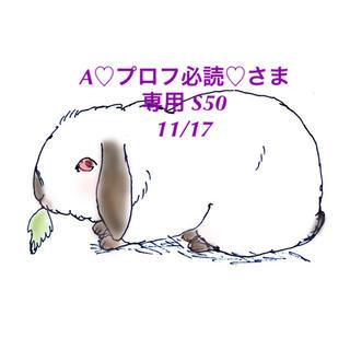 スヌーピー(SNOOPY)の★11/17★A♡プロフ必読♡さま専用ページ/S50(その他)