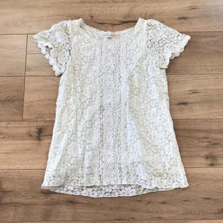 トランテアンソンドゥモード(31 Sons de mode)の半袖レースカットソー Tシャツ(カットソー(半袖/袖なし))