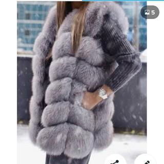 ザラ(ZARA)の冬の豪華ファーベスト 大きいサイズあります(毛皮/ファーコート)