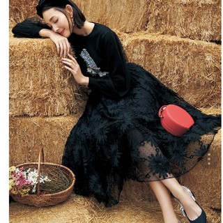 Chesty - 新品・未使用:chesty チュール刺繍スカート  1size